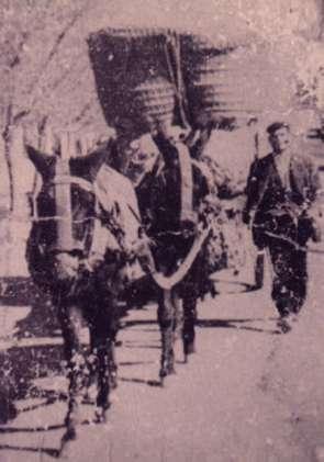 165.-Inocencio-Gutierrez--El-Huevero-.-Hacia-1955.-Procedencia-Inocencio-Gutierrez