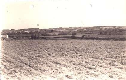 189.-Paisaje-de-Bargas.-Procedencia-Archivo-Municipal