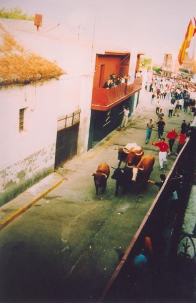 306.-Encierros-en-la-calle-Arroyada.-Ano-1998.-Proc.-Mª-Jesus-Alonso