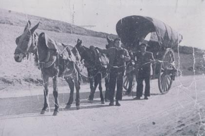 383.-Los-hermanos-Evaristo-y-Mariano-Hdez.-Villasevil.-Alo-1911.-Proced.-Victoria-Hernandez-Gutierrez