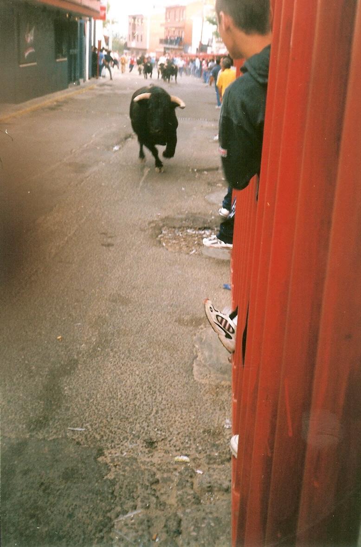 414.-Encierros-en-la-calle-Arroyada.-Procedencia-Gonzalo-Alonso-Perpetua