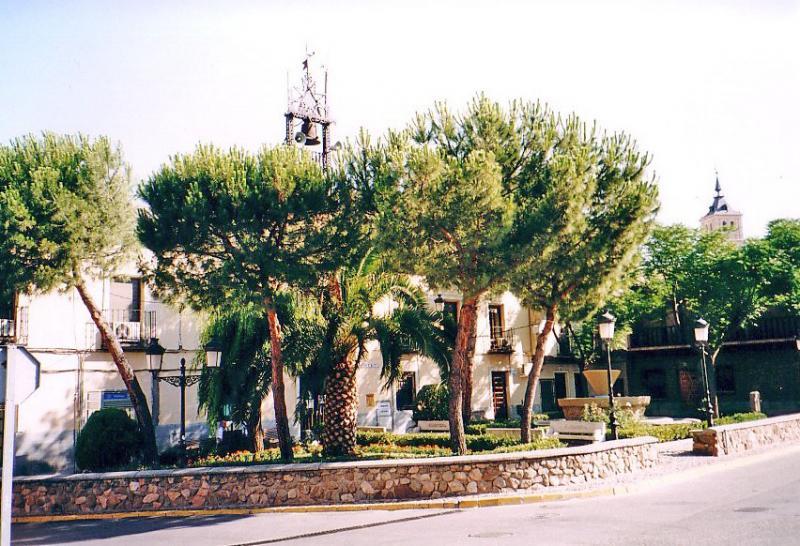 467.-Ayuntamiento-de-Bargas.-2004.-Proced.-Felipe-Pleite