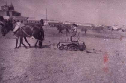 90.-La-trilla-en-la-era-del-Tio-Alberto.-Ano-1957.-Procedencia-Francisco-Pleite