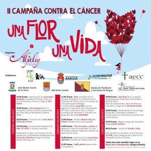 II Campaña contra el cancer