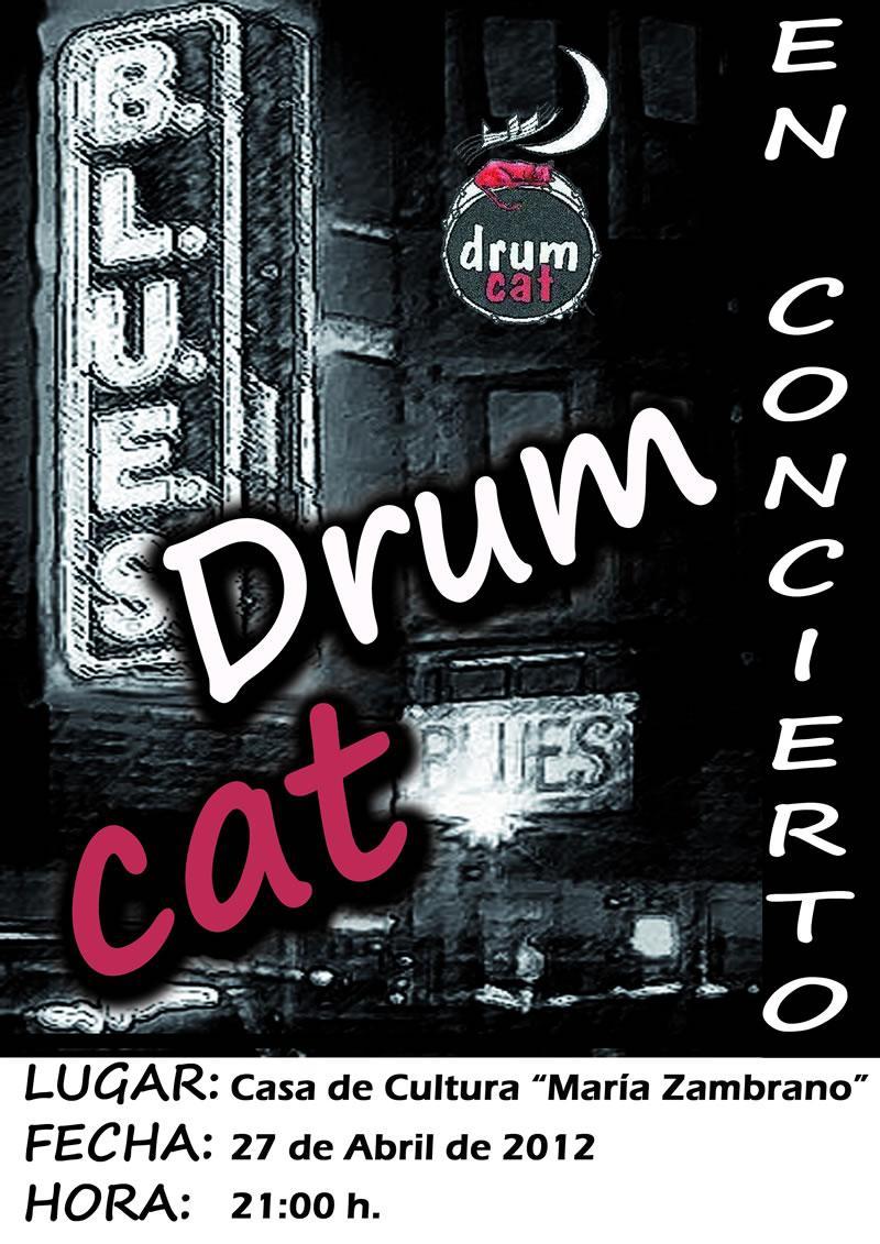 Drum Cat Blues en concierto
