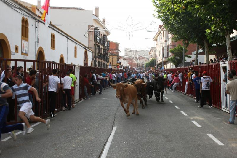 CULMINAN EXITOSAMENTE LOS ESPECTÁCULOS TAURINOS DE BARGAS