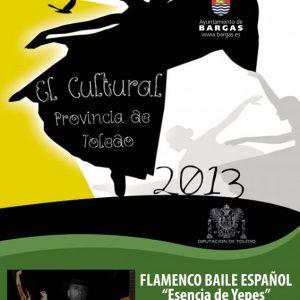 FLAMENCO – Baile español