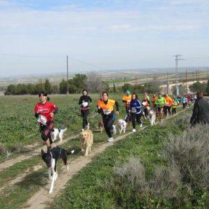 BARGAS celebra el II CANICROSS con gran éxito