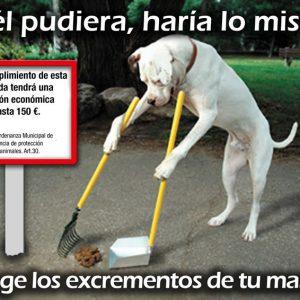 Campaña animales de compañia
