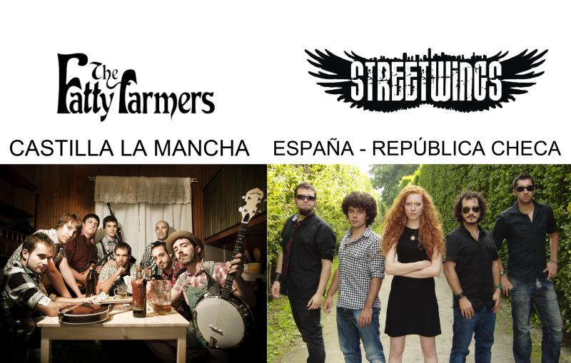 "CONCIERTO MÚSICA CELTA – STREET WINGS"" + ""THE FATTY FARMERS"" – Verano Cultural 2013″"