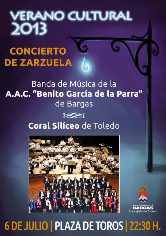 CONCIERTO DE ZARZUELA – Verano Cultural 2013