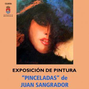 Exposición de Pintura: «Pinceladas», de Juan Sangrador
