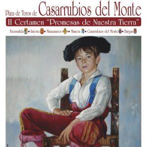 """Rubén de Tomás en la novillada de Casarrubios del Monte, dentro del 2º Certamen """"Promesas de Nuestra Tierra"""""""