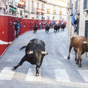 Los festejos taurinos vuelven a celebrarse en Bargas con motivo de sus fiestas populares