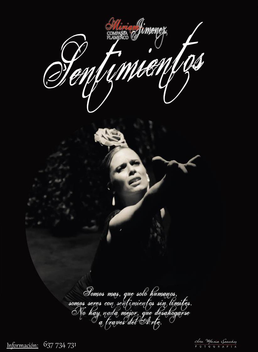 Danza-Flamenco: Sentimientos