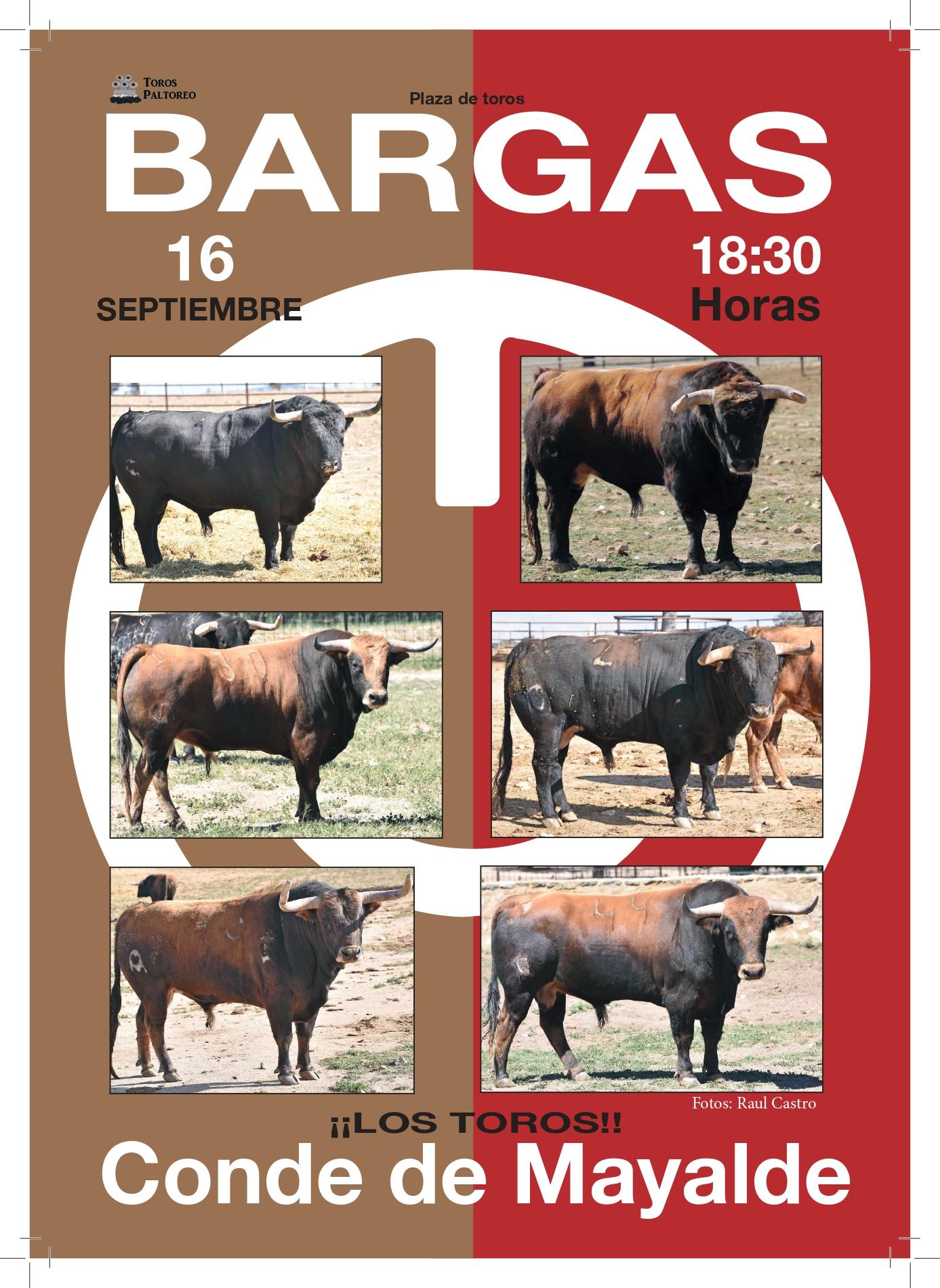 TOROS BARGAS A4 revista toros