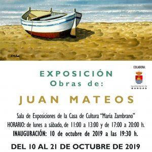 Exposición de Pintura: Juan Mateos