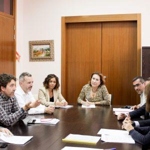 Luz verde para poner en funcionamiento el Área Territorial de Prestación Conjunta (ATPC) de Servicio de Taxi en los municipios de Bargas, Olías del Rey y Magán